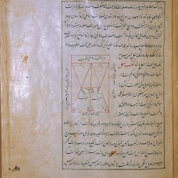 The Anatomy of the Human Body (1488), A diagram of the cranial sutures, drawn in red and black ink. - تشريح بدن انسان (۱۴۸۸ میلادی)، نمودار جمجمه