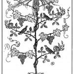 Edmund J Sullivan Illustrations to The Rubaiyat of Omar Khayyam (65)