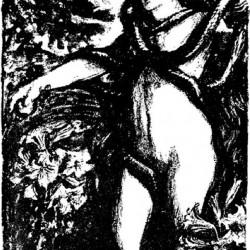 Edmund J Sullivan Illustrations to The Rubaiyat of Omar Khayyam (15)