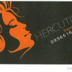 Iranian Business Card (3)