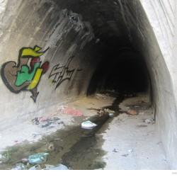 Graffiti on Tehran canal walls (12)