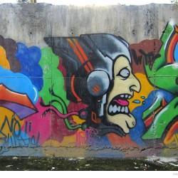 Graffiti on Tehran canal walls (37)