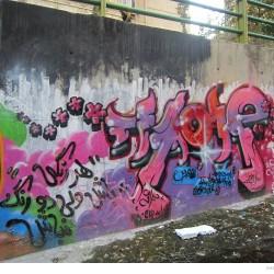 Graffiti on Tehran canal walls (40)