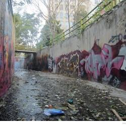Graffiti on Tehran canal walls (59)