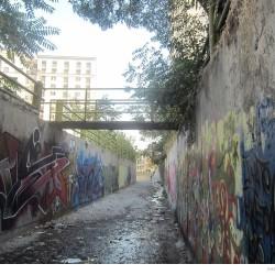 Graffiti on Tehran canal walls (64)