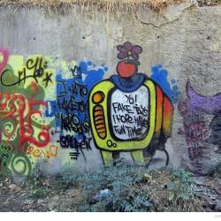 Graffiti on Tehran canal walls (66)
