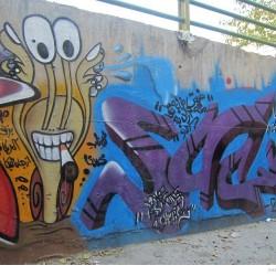 Graffiti on Tehran canal walls (69)