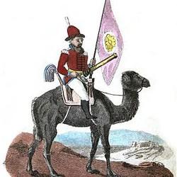 A Camel Artillery man