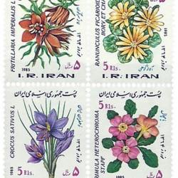 Nowruz 1985