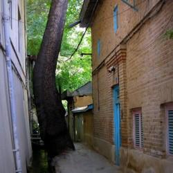 Darakeh, Tehran, June 2012 (11)