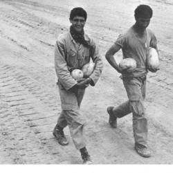 Daily Life at the Iran-Iraq War Fronts (21)